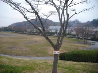 blog_141220-5