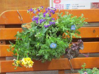 blog_180329-7