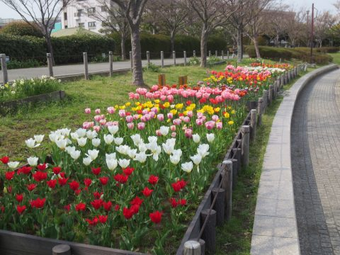 blog_180404-3