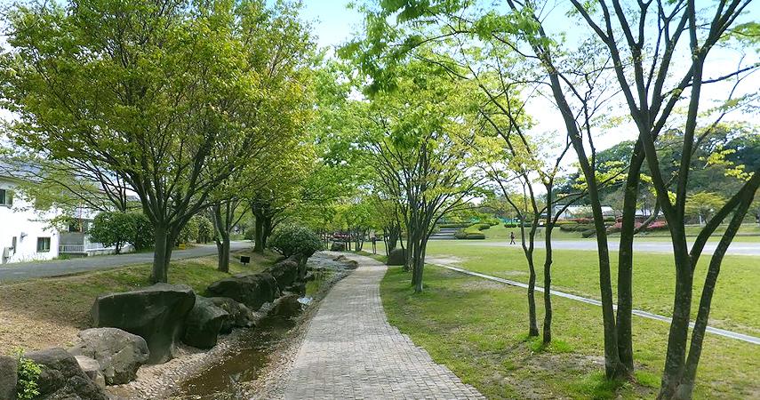 緑道の写真