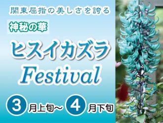 主催イベント:ヒスイカズラフェスティバルの画像