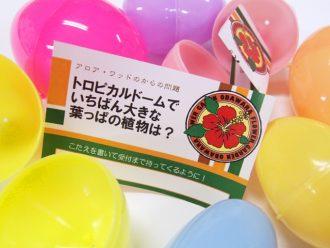 主催イベント:春休みイースター!!の画像