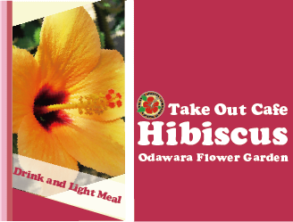 Take Out Cafe Hibiscus