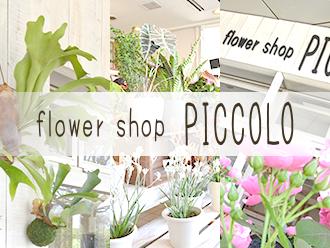 flower shop PICCOLO